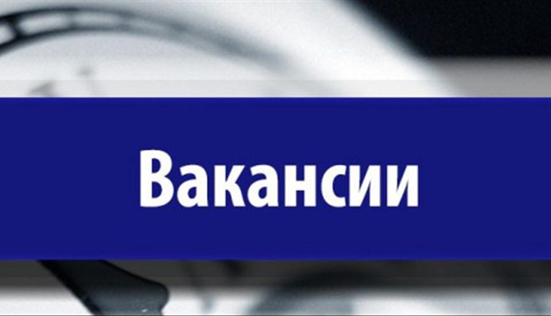 Новые вакансии на Азово-Черноморском побережье