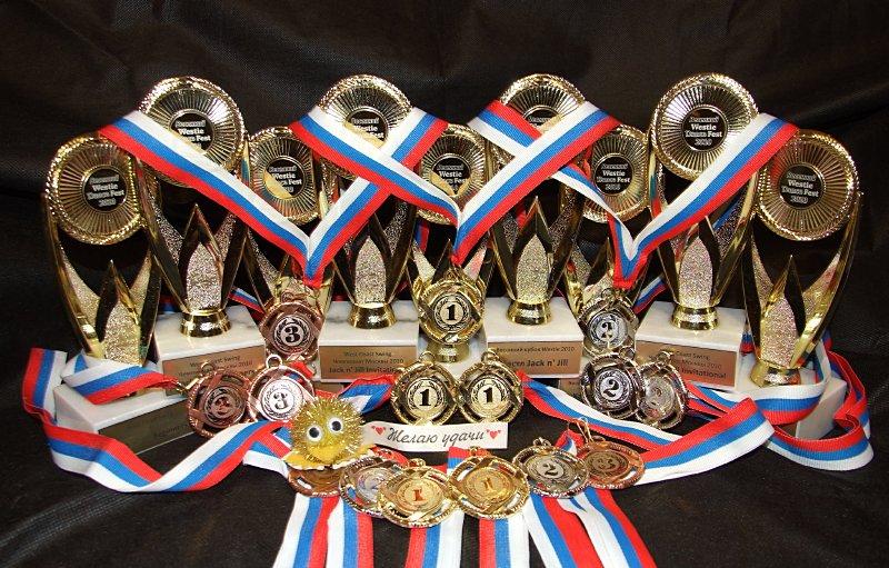 Августовские победы армавирских спортсменов