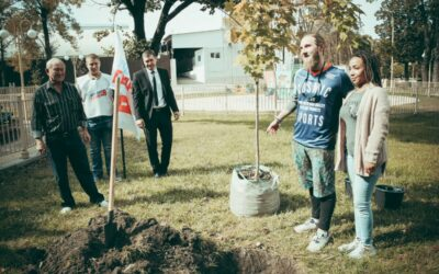 Посадка памятного дерева в городском парке
