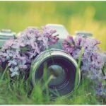Конкурс фотографий
