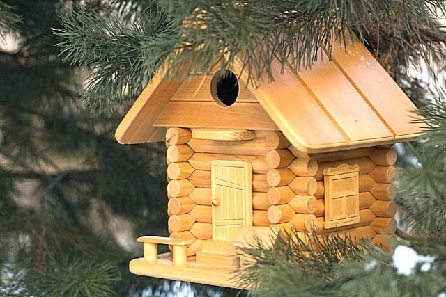 Акция «Дом для птиц»